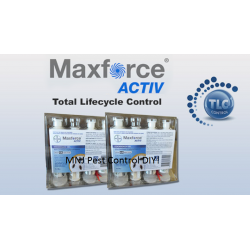 Maxforce Active Pack of 3