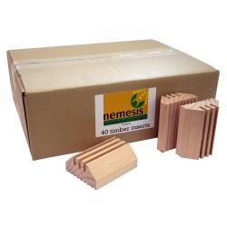 NEMESIS 40 x TIMBER REFILLS