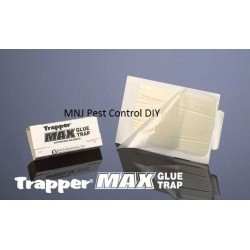 Trapper Max Glue Trap x10